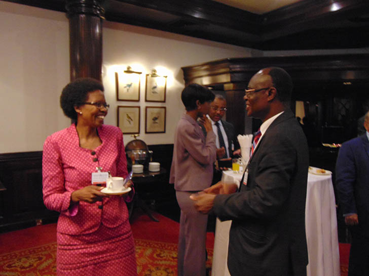 Read more about the article VALIDATION WORKSHOP ON PROJECT TO STEM IFFS FROM AFRICA – NOV 2016